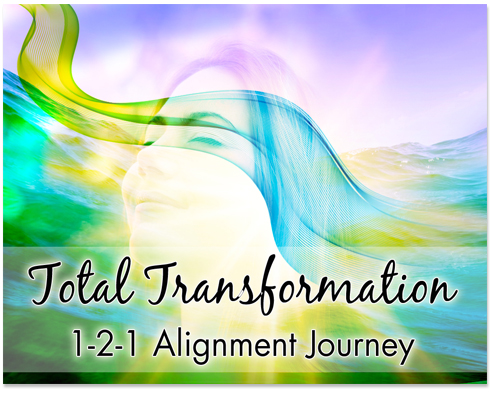 Total Transformation 1-2-1 Alignment Journey
